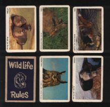 Collectables cards game  Wild-life by Pepys circa 1960's